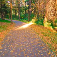 Золотая осень :: Виктория Флейта