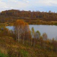 Осенняя симфония :: Нина северянка