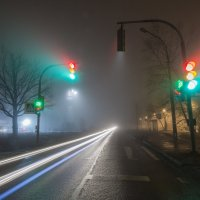 Движение, которое видно лишь с близкого расстояния :: Игорь Станкевич