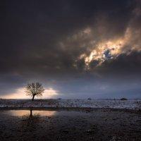 Одиночество :: Александра Степанова