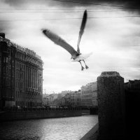 Ощущение :: Elena Gontarenko