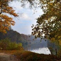 Уж небо осенью дышало... :: Наталия Лыкова