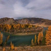 Алтайская осень... :: Наталья Маркова