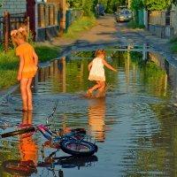 Лисапет, отдохни - здесь такая лужа! :: Валентина Данилова