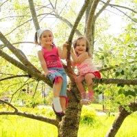 Детские улыбки дороже всего на свете :: Ольга Чирятникова