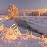 Красавица зима :: Руслан Авдевич