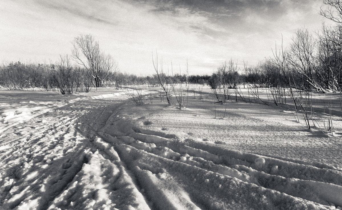 морозное утро - Андрей Белокопытов