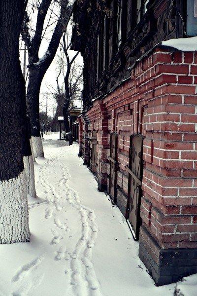 в доль стены - Елена Ганичева