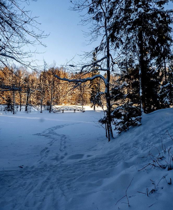 Однажды зимой - Наталья Rosenwasser