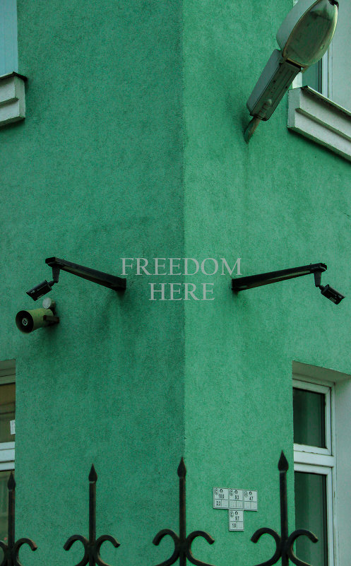 FREEDOM HERE - Annie Kuzz