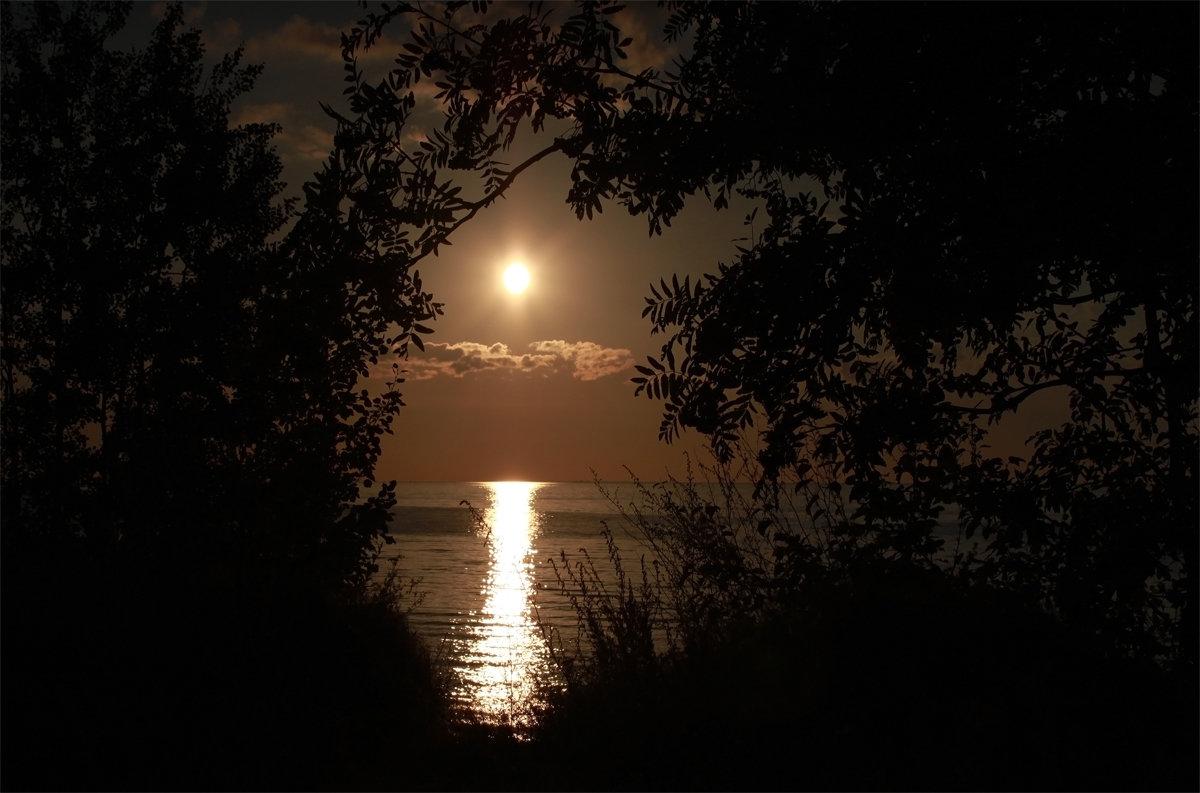 Закат цвета корицы - Елена Шторм
