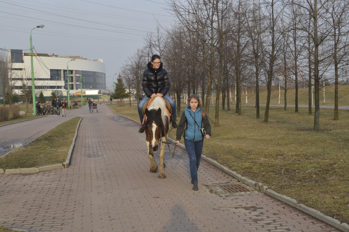 Малый бизнес парк 800лет москвы