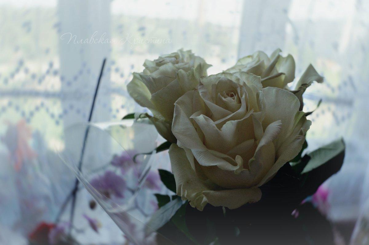 Белые розы - Кристина Щукина