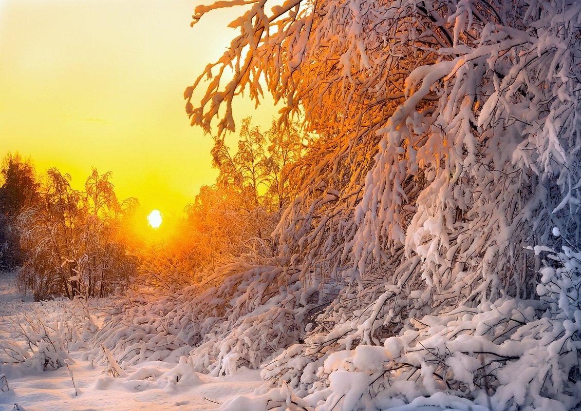 Зимний закат солнца... - Федор Кованский