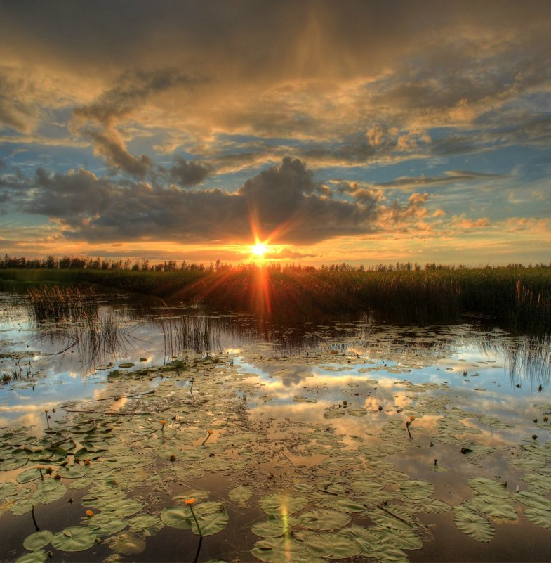Вечер на заливе - Сергей Григорьев