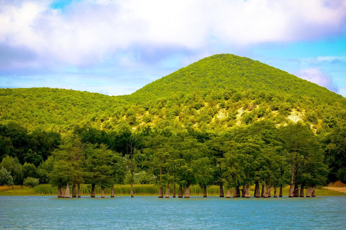 чудо озера Сукко-кипарисы - Алёна Палий