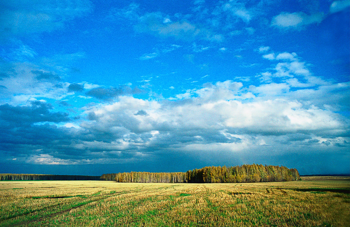 Пейзаж. - Женя Лузгин