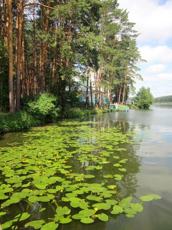 река Ик - Елена Кислых
