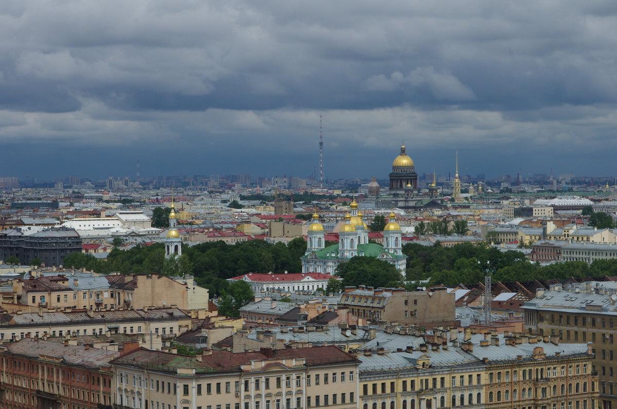 Панорама Санкт-Петербурга. - Елена Назарова