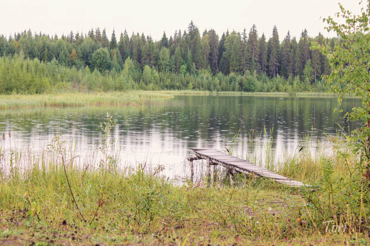 озера - Екатерина Тележенко