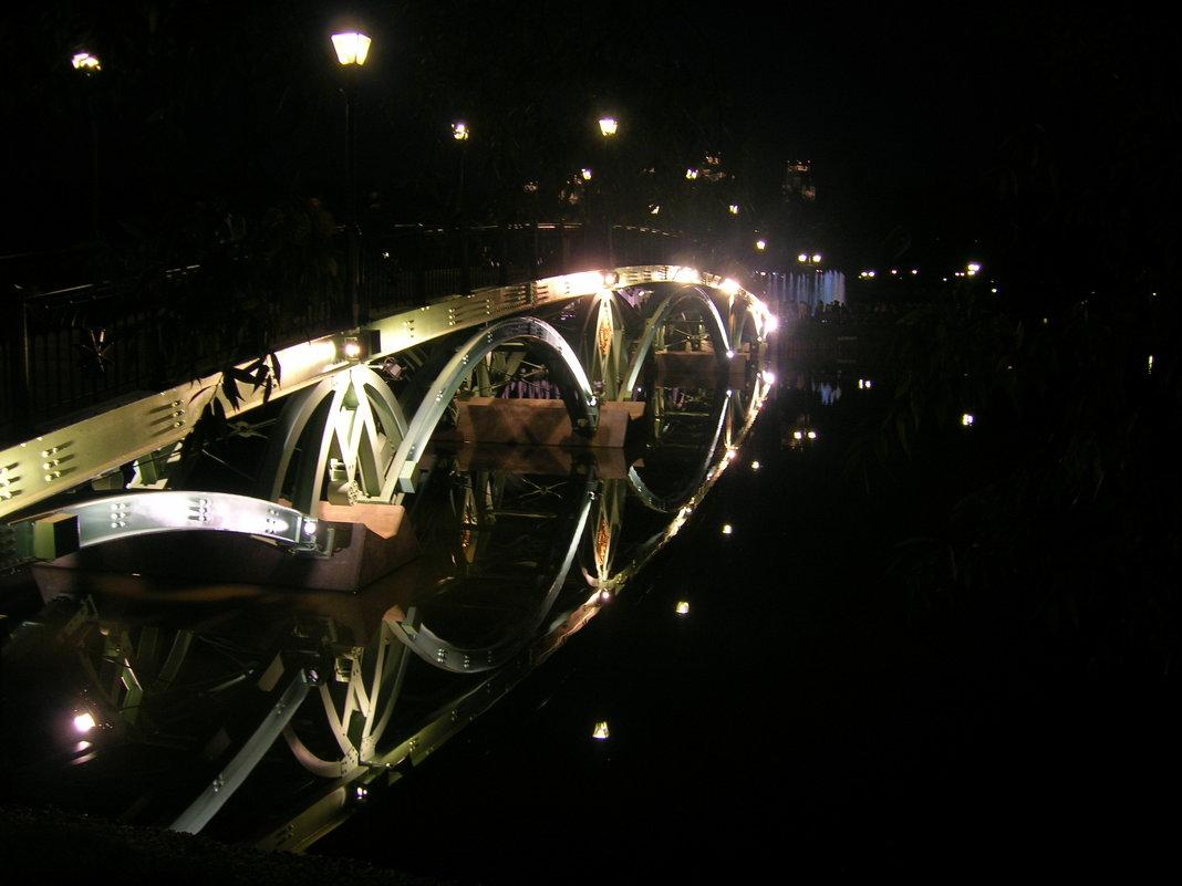 Мост в Царицыно - Игорь