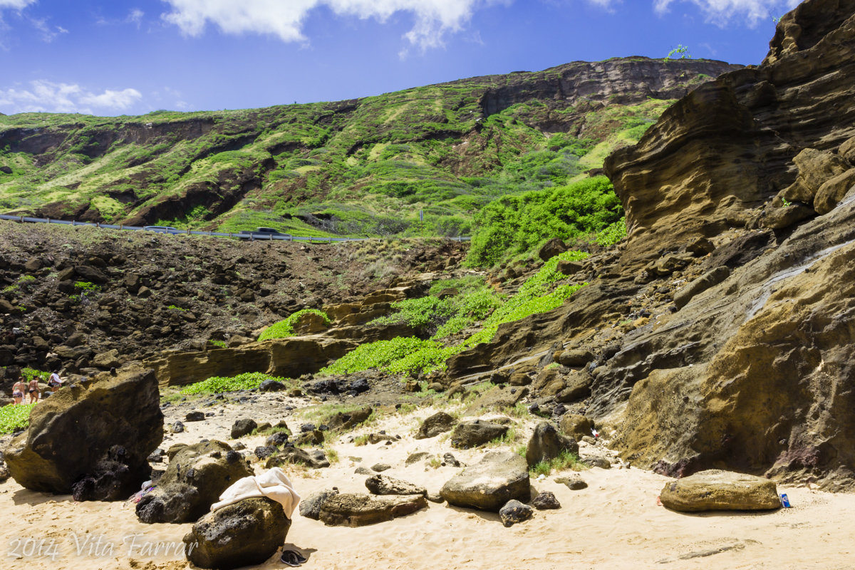 Пляж Honolulu - Vita Farrar