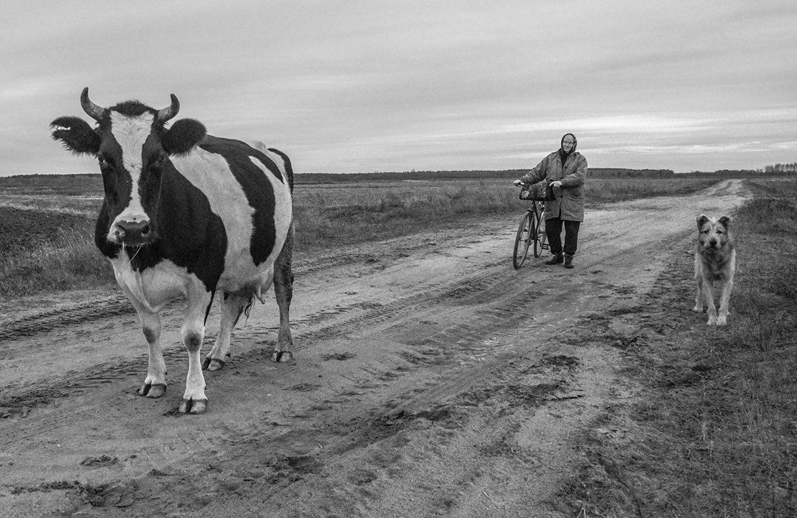 Идущие с поля - Сергей Михайлов
