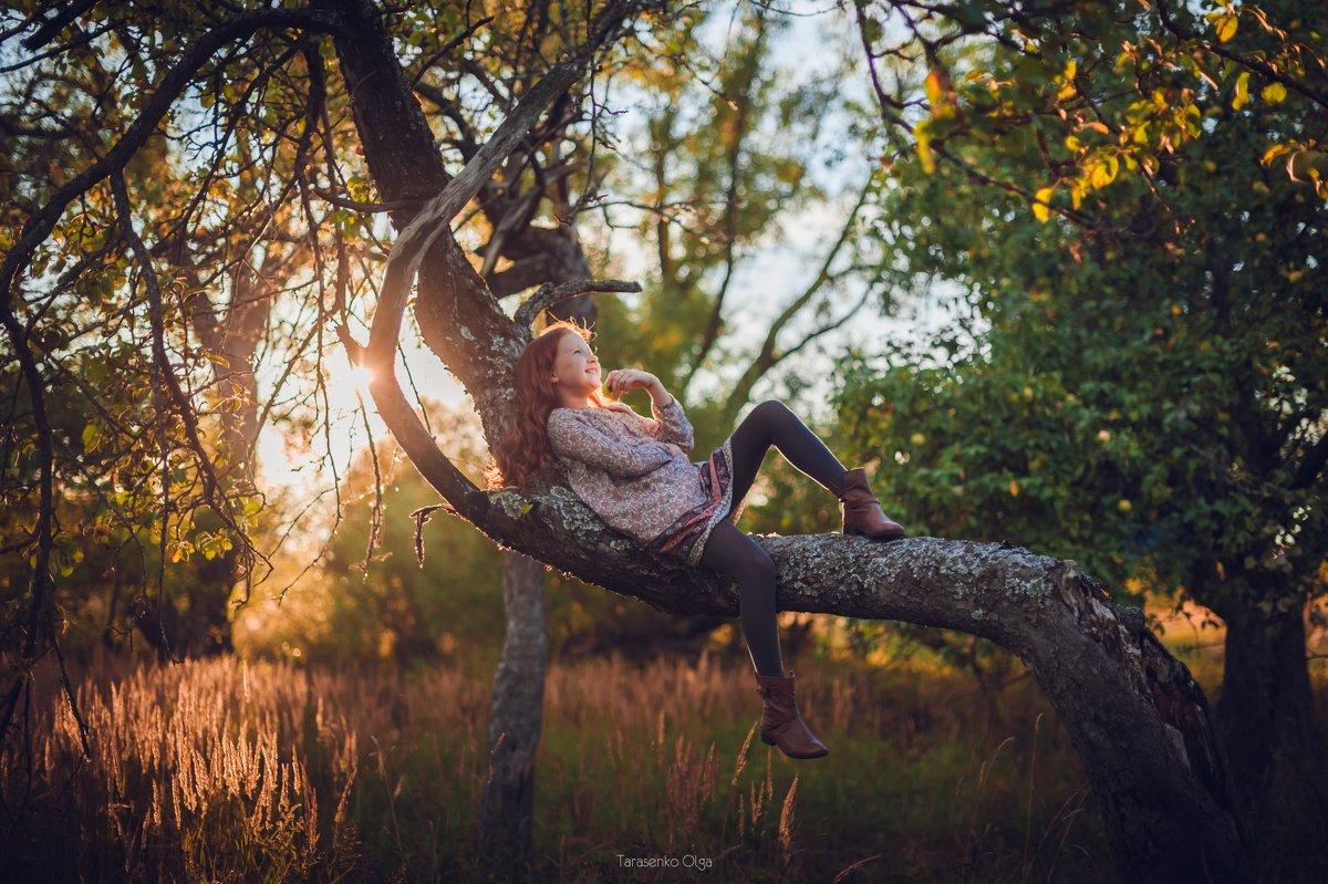 Дети солнца - Olga Tarasenko