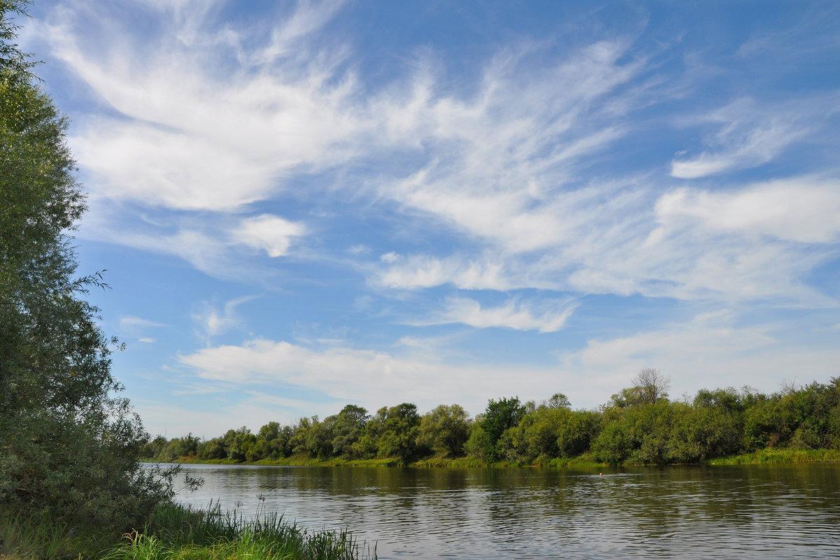 Легкие облака августа - Диана Задворкина