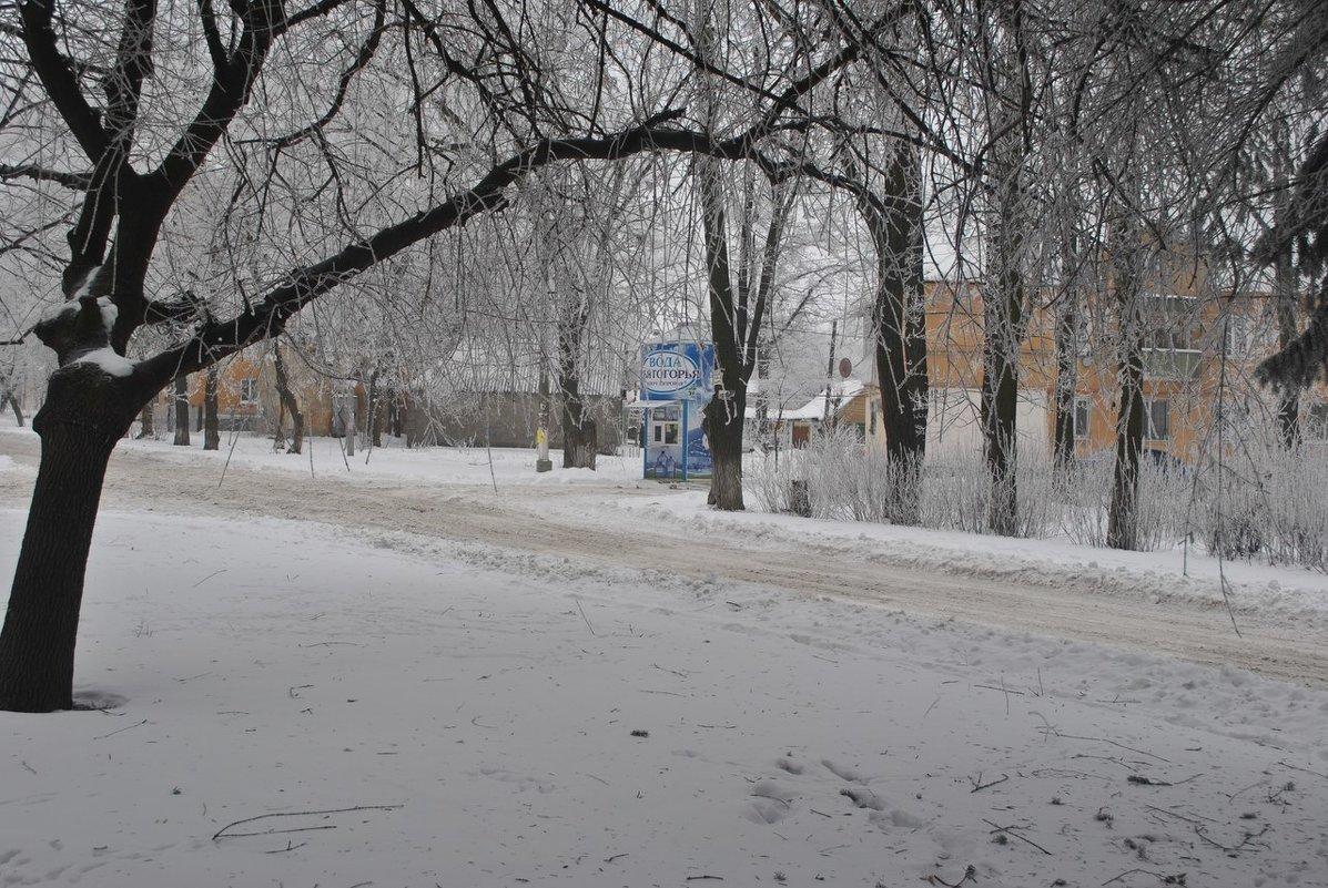 Зимняя прогулка... - Valeriya Voice