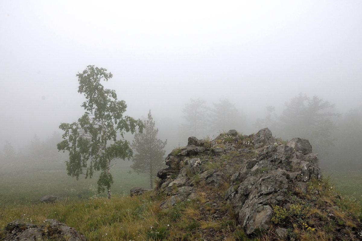В горах - Владимир Смирнов