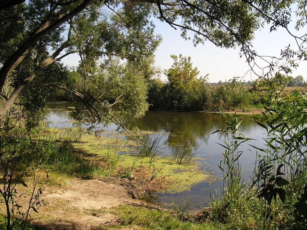 река - valeriy g_g
