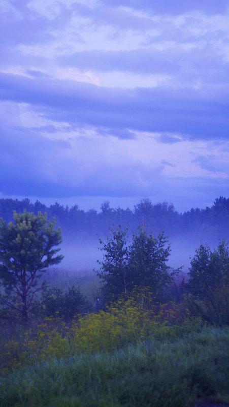 Туман - Sergey K.