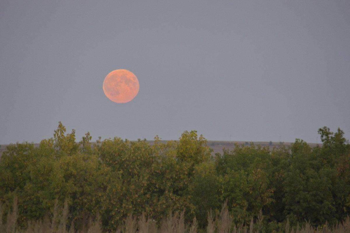 Восход Луны - Ирина Богатырёва