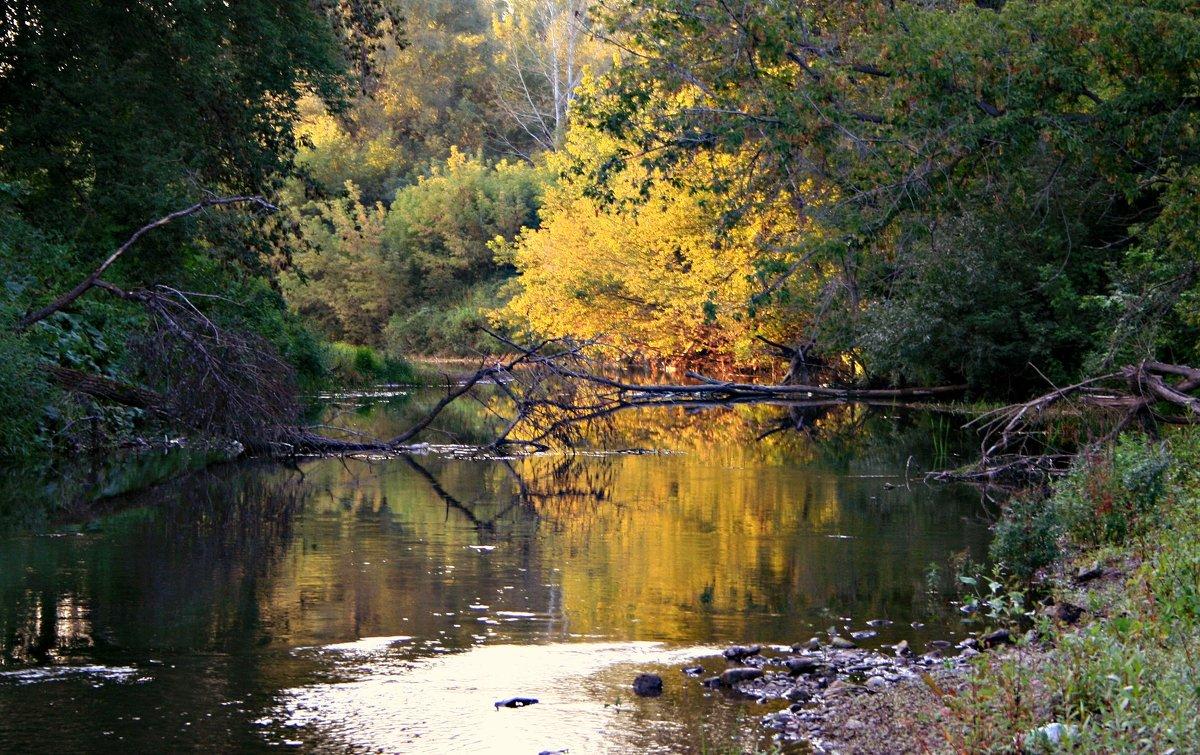 Осень рядом... - Евгений Юрков