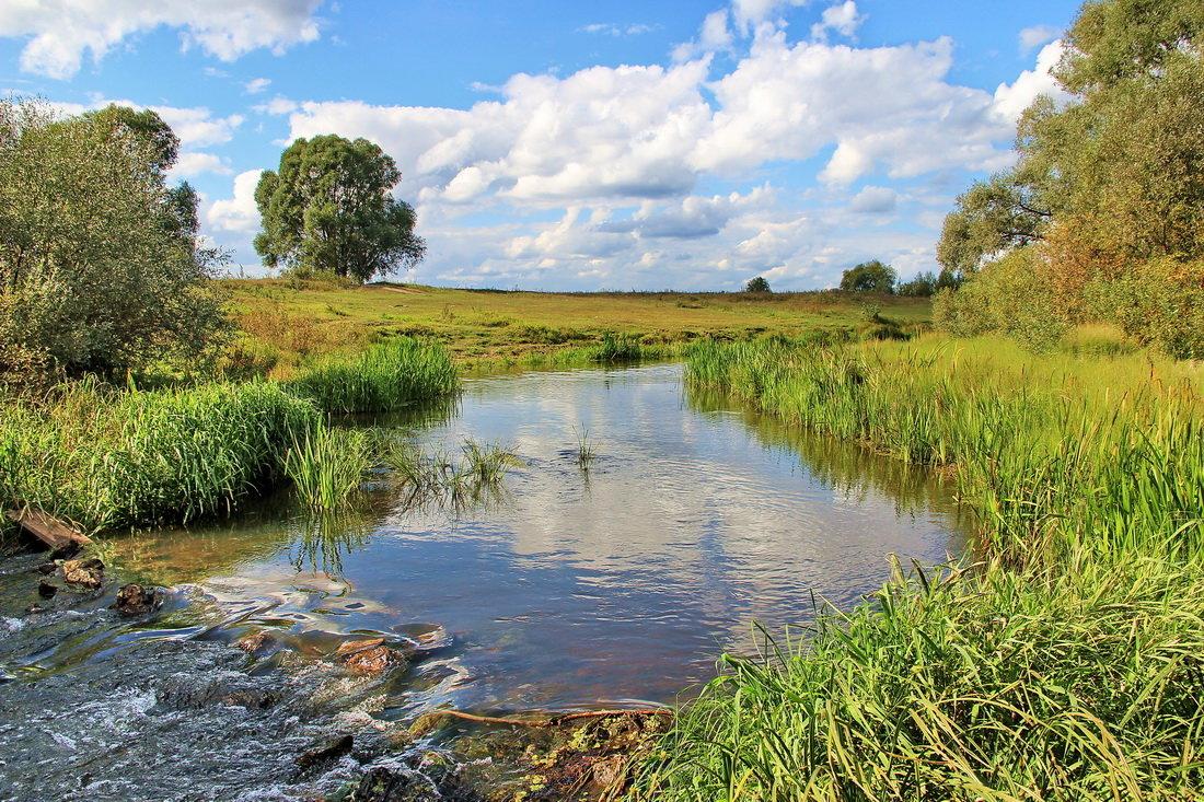 Есть в русских реках гордое смиренье... - Лесо-Вед (Баранов)