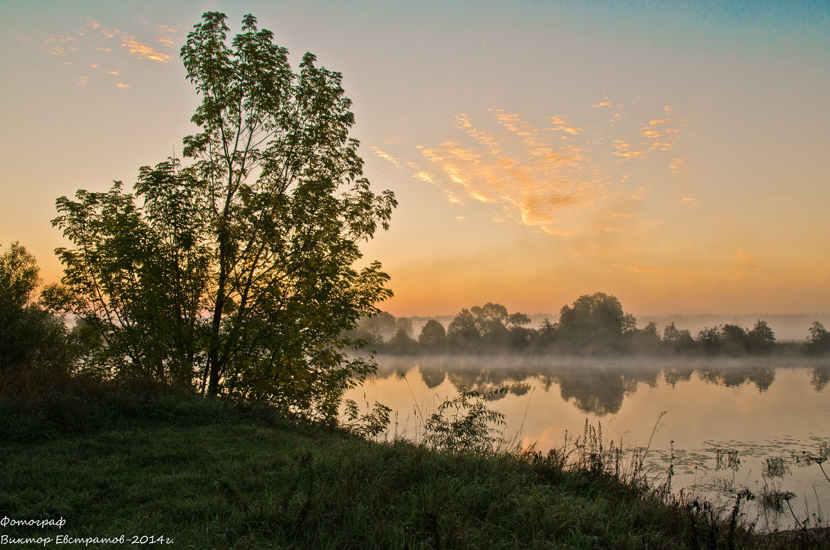 Утро на реке. - Виктор Евстратов