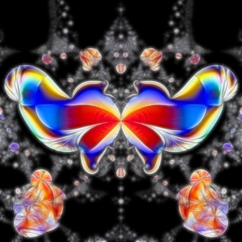бабочка - linnud