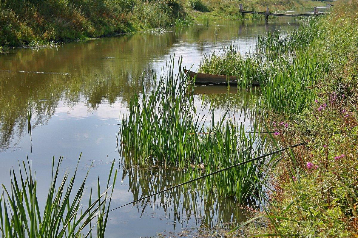 рыбалка в рассадном