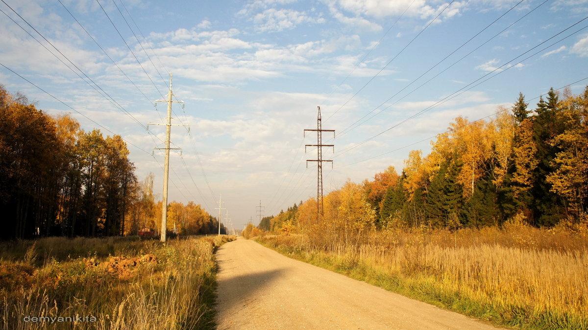 Осенняя дорога - demyanikita