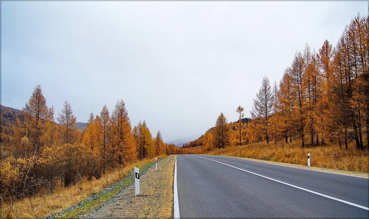 Догоняя непогоду - Виктор Четошников