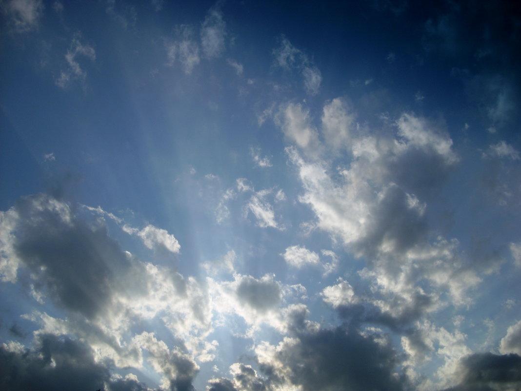 родное небо - Надежда
