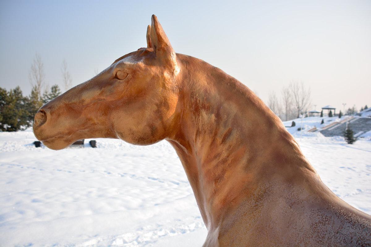 памятник лошади - oxana