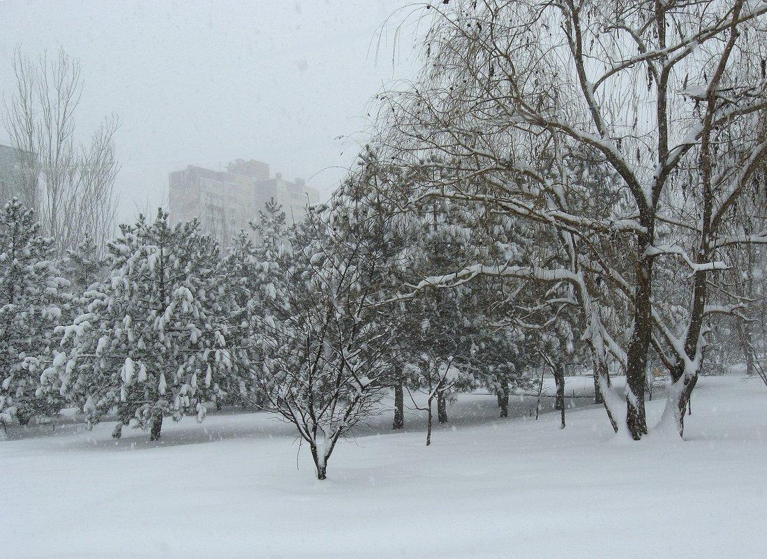 В снегопад - Natali
