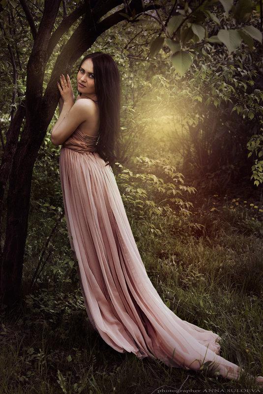 Таинственный лес - Анна Сулоева