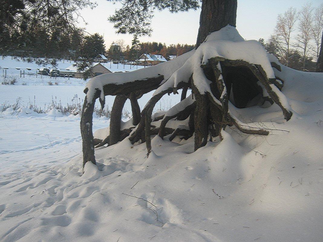 Снежный осьминожка... - Tatiana Markova