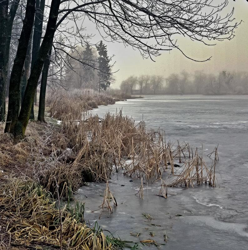 зимнее утро - юрий иванов