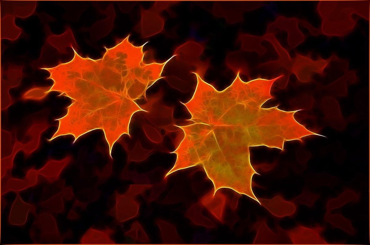 Осенние листья - Алексей Бажан