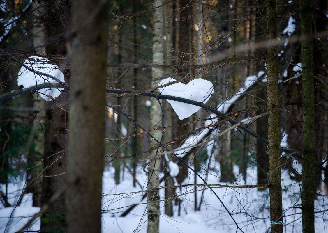 и у леса есть сердце.... - Оксана Грищенко