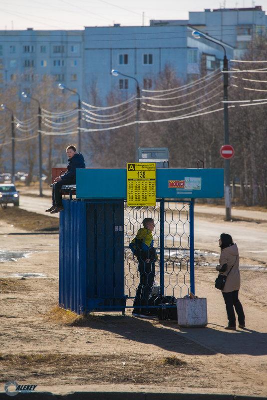Жду автобус - Алексей Попов